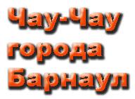 Чау-Чау города Барнаул. Сайт Юлии Антроповой
